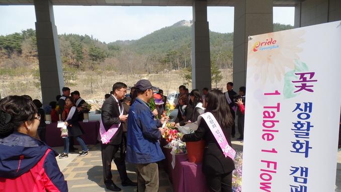 '꽃 받아 가세요!'... 경북도청 꽃 향기로 가득~